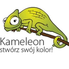 Kameleon - stwórz własny wzór